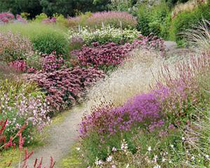 Сад в стиле прованс ассоциируется у